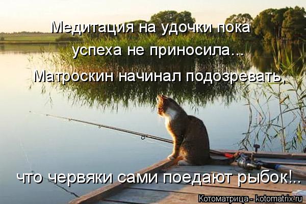 Котоматрица: Медитация на удочки пока успеха не приносила... Матроскин начинал подозревать, что червяки сами поедают рыбок!..