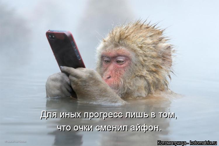 Котоматрица: Для иных прогресс лишь в том, что очки сменил айфон.