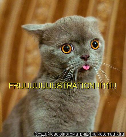 Котоматрица: FRUUUUUUUSTRATION!!!11!!!