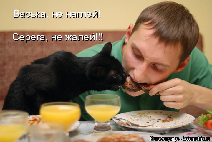 Котоматрица: Васька, не наглей! Серега, не жалей!!!