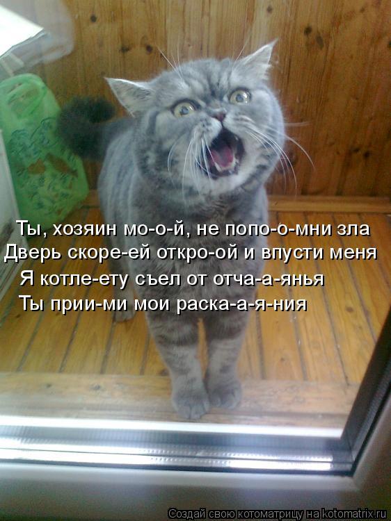 Котоматрица: Ты, хозяин мо-о-й, не попо-о-мни зла Дверь скоре-ей откро-ой и впусти меня Я котле-ету съел от отча-а-янья Ты прии-ми мои раска-а-я-ния