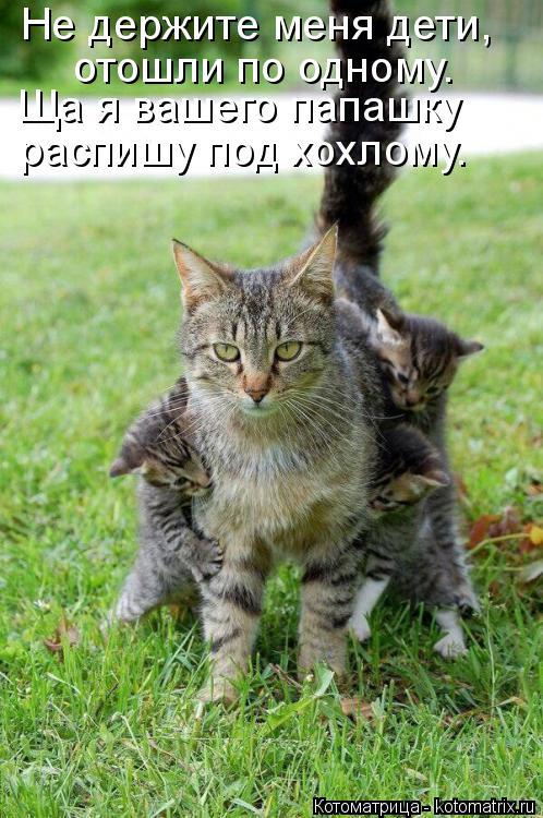 Котоматрица: Не держите меня дети, отошли по одному. Ща я вашего папашку распишу под хохлому.