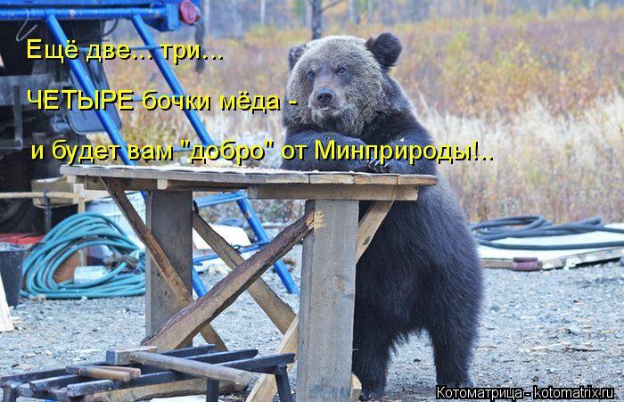 """Котоматрица: Ещё две... три... ЧЕТЫРЕ бочки мёда - и будет вам """"добро"""" от Минприроды!.."""