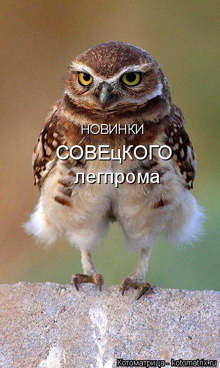Котоматрица: НОВИНКИ СОВЕцКОГО легпрома