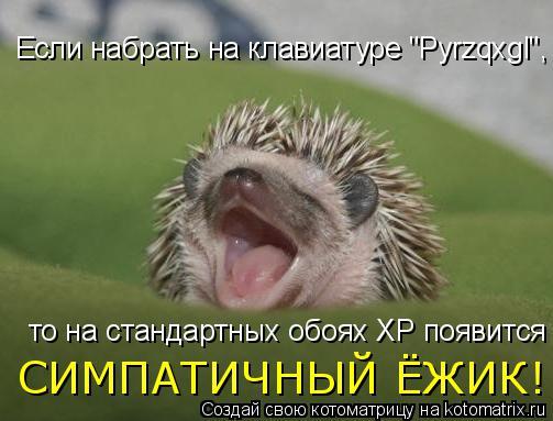 """Котоматрица: Если набрать на клавиатуре """"Pyrzqxgl"""", то на стандартных обоях XP появится СИМПАТИЧНЫЙ ЁЖИК!"""