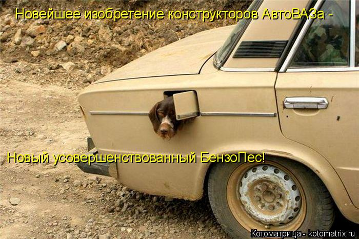 Котоматрица: Новейшее изобретение конструкторов АвтоВАЗа -  Новый усовершенствованный БензоПес!