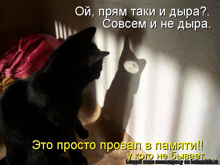 Котоматрица: Ой, прям таки и дыра?. Совсем и не дыра. Это просто провал в памяти!! у кого не бывает.....