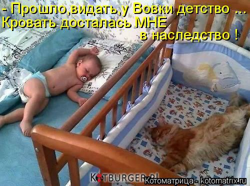 Котоматрица: - Прошло,видать,у Вовки детство ... Кровать досталась МНЕ в наследство !