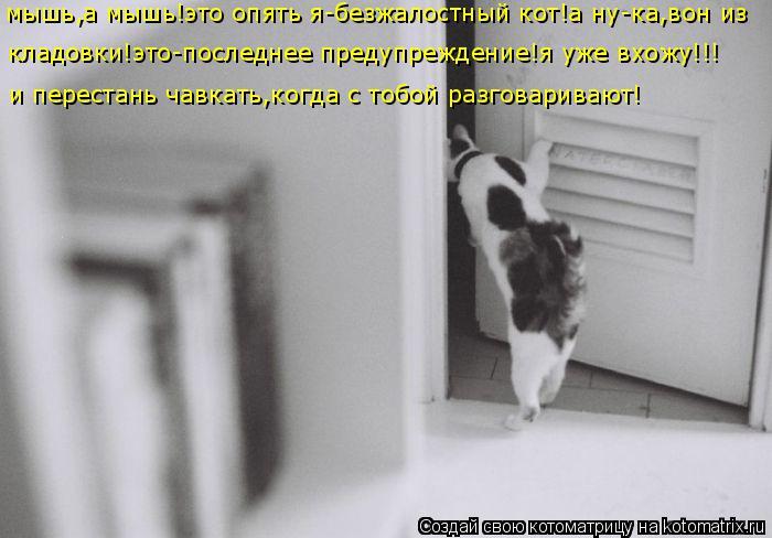 Котоматрица: мышь,а мышь!это опять я-безжалостный кот!а ну-ка,вон из кладовки!это-последнее предупреждение!я уже вхожу!!! и перестань чавкать,когда с тобо