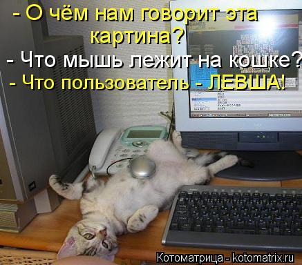 Котоматрица: - О чём нам говорит эта картина? - Что мышь лежит на кошке? - Что пользователь - ЛЕВША!