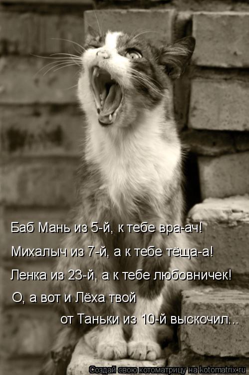 Котоматрица: Баб Мань из 5-й, к тебе вра-ач! Михалыч из 7-й, а к тебе тёща-а! Ленка из 23-й, а к тебе любовничек!  О, а вот и Лёха твой  от Таньки из 10-й выскочил...