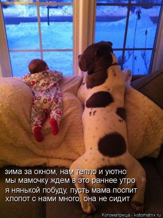 Котоматрица: зима за окном, нам тепло и уютно мы мамочку ждем в это раннее утро я нянькой побуду, пусть мама поспит хлопот с нами много, она не сидит