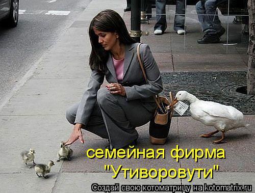 "Котоматрица: семейная фирма ""Утиворовути"""