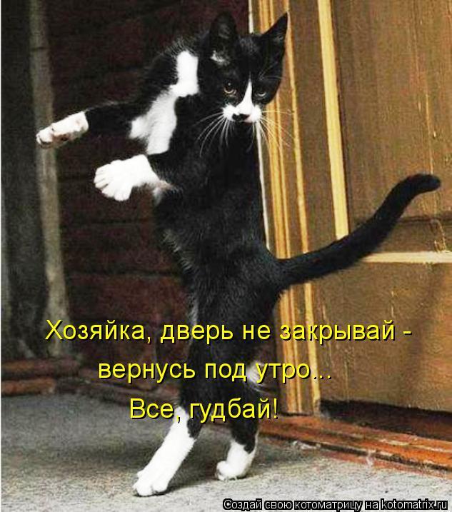 Котоматрица: Хозяйка, дверь не закрывай -  вернусь под утро... Все, гудбай!