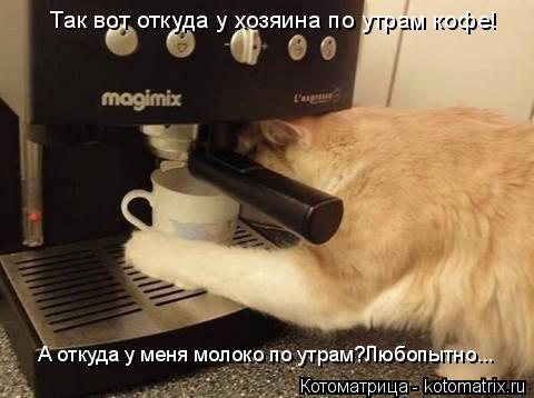 Котоматрица: Так вот откуда у хозяина по утрам кофе! А откуда у меня молоко по утрам?Любопытно...
