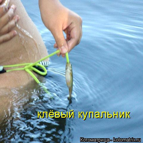 Котоматрица: клёвый купальник
