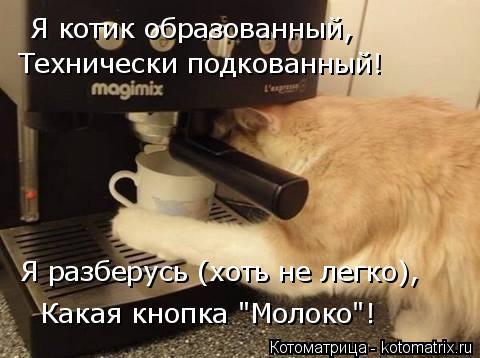 """Котоматрица: Я котик образованный, Технически подкованный! Я разберусь (хоть не легко), Какая кнопка """"Молоко""""!"""