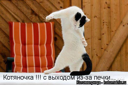 Котоматрица: Котяночка !!! с выходом из-за печки...