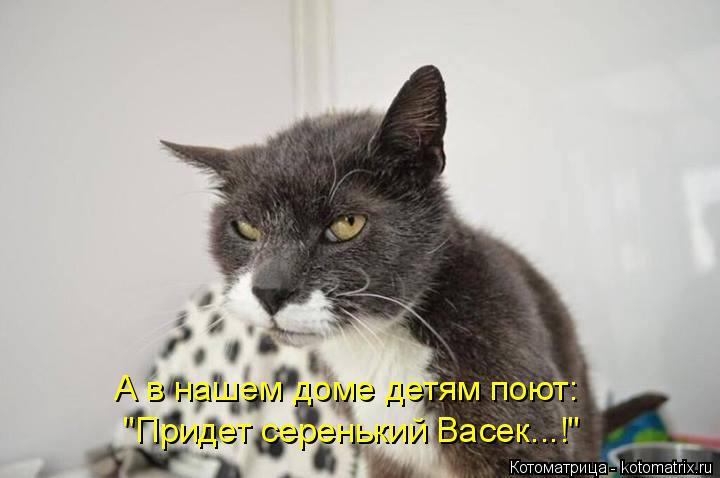 """Котоматрица: А в нашем доме детям поют: """"Придет серенький Васек...!"""""""