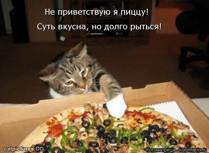 Котоматрица: Не приветствую я пиццу! Суть вкусна, но долго рыться!