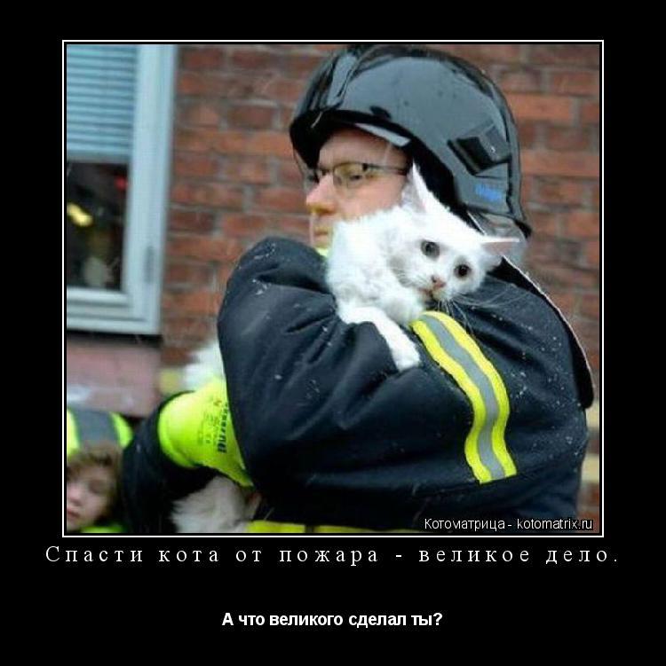 Котоматрица: Спасти кота от пожара - великое дело. А что великого сделал ты?