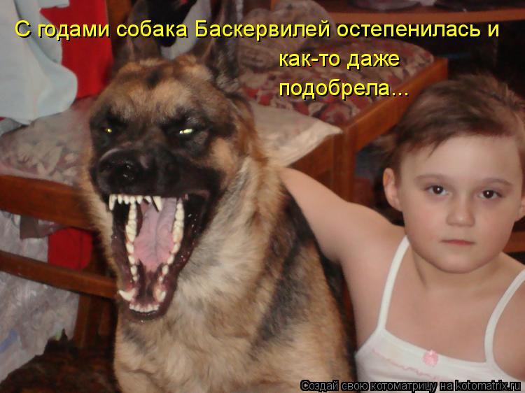 Котоматрица: С годами собака Баскервилей остепенилась и  как-то даже подобрела...
