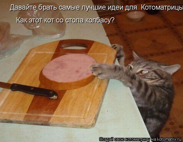 Котоматрица: Давайте брать самые лучшие идеи для  Котоматрицы, Как этот кот со стола колбасу?