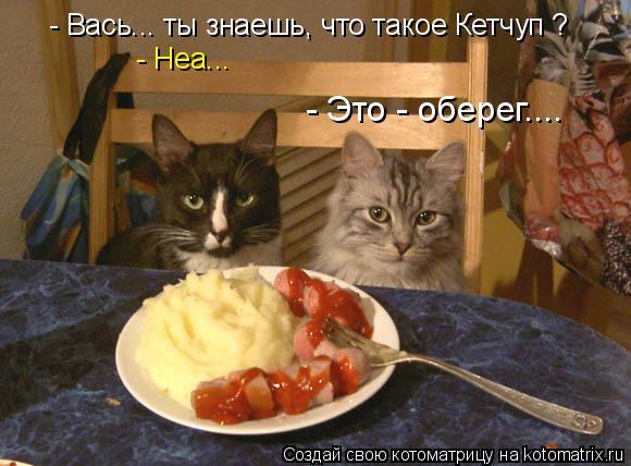 Котоматрица: - Вась... ты знаешь, что такое Кетчуп ? - Неа... - Это - оберег....