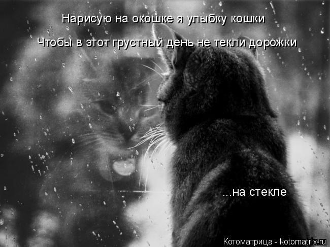 Котоматрица: Нарисую на окошке я улыбку кошки Чтобы в этот грустный день не текли дорожки ...на стекле