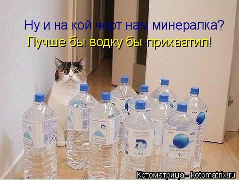 Котоматрица: Ну и на кой черт нам минералка? Лучше бы водку бы прихватил!