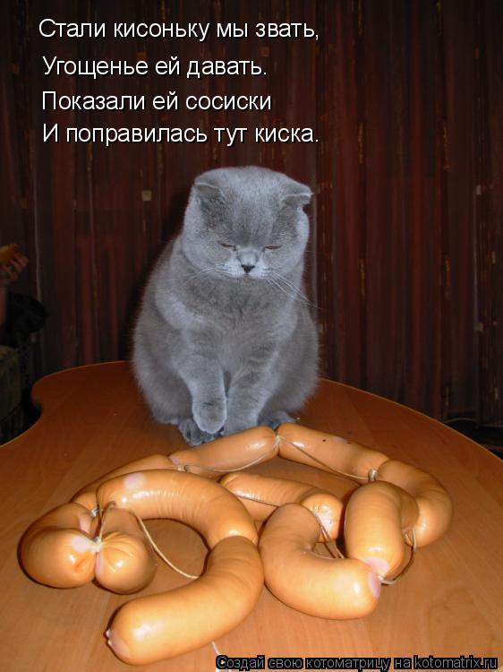 Котоматрица: Угощенье ей давать. Стали кисоньку мы звать, Показали ей сосиски И поправилась тут киска.