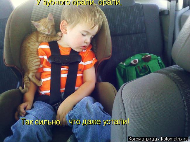 Котоматрица: У зубного орали, орали,  Так сильно,  что даже устали!