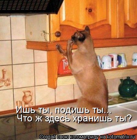 Котоматрица: Ишь ты, подишь ты... Что ж здесь хранишь ты?