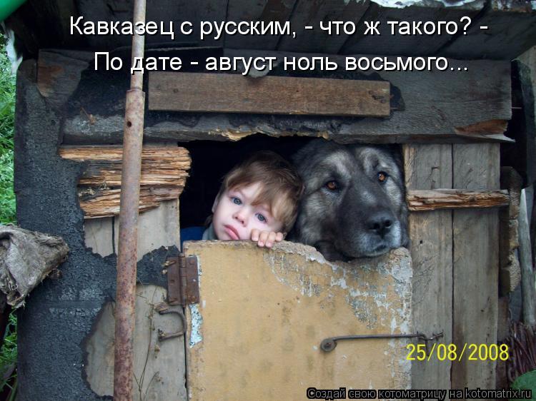 Котоматрица: По дате - август ноль восьмого... Кавказец с русским, - что ж такого? -