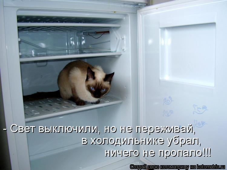 Котоматрица: - Свет выключили, но не переживай, в холодильнике убрал,  ничего не пропало!!!
