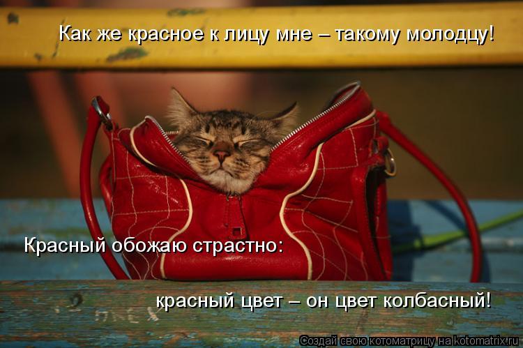 Котоматрица: Как же красное к лицу мне – такому молодцу! Красный обожаю страстно: красный цвет – он цвет колбасный!