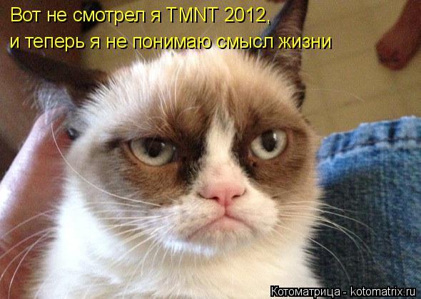 Котоматрица: и теперь я не понимаю смысл жизни Вот не смотрел я TMNT 2012,
