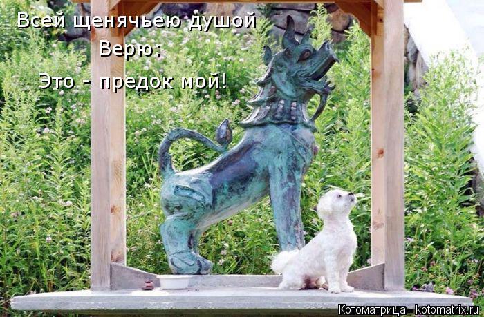 Котоматрица: Всей щенячьею душой Верю: Это - предок мой!
