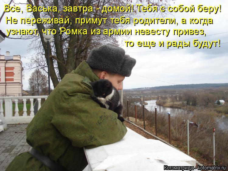 Котоматрица: Все, Васька, завтра - домой! Тебя с собой беру! Не переживай, примут тебя родители, а когда узнают, что Ромка из армии невесту привез, то еще и р