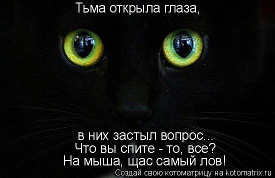 Котоматрица: Тьма открыла глаза, в них застыл вопрос... Что вы спите - то, все? На мыша, щас самый лов!
