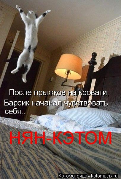 Котоматрица: После прыжков на кровати,  Барсик начанал чувствовать себя.. НЯН-КЭТОМ