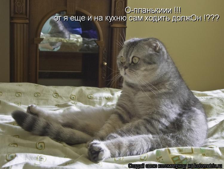 Котоматрица: О-ппанькиии !!! эт я еще и на кухню сам ходить должОн !???