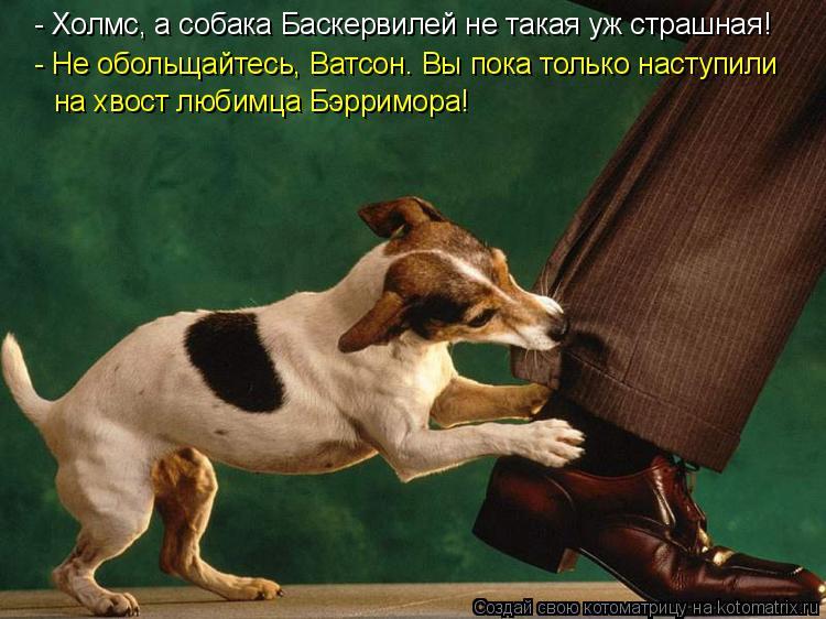 Котоматрица: - Не обольщайтесь, Ватсон. Вы пока только наступили на хвост любимца Бэрримора! - Холмс, а собака Баскервилей не такая уж страшная!