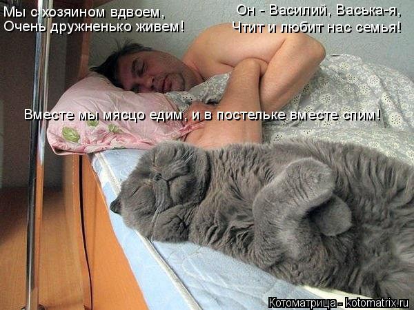 Котоматрица: Мы с хозяином вдвоем, Очень дружненько живем! Он - Василий, Васька-я, Чтит и любит нас семья! Вместе мы мясцо едим, и в постельке вместе спим!