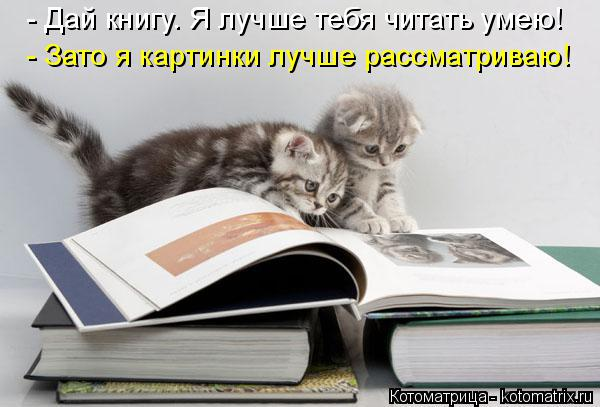 Котоматрица: - Дай книгу. Я лучше тебя читать умею! - Зато я картинки лучше рассматриваю!