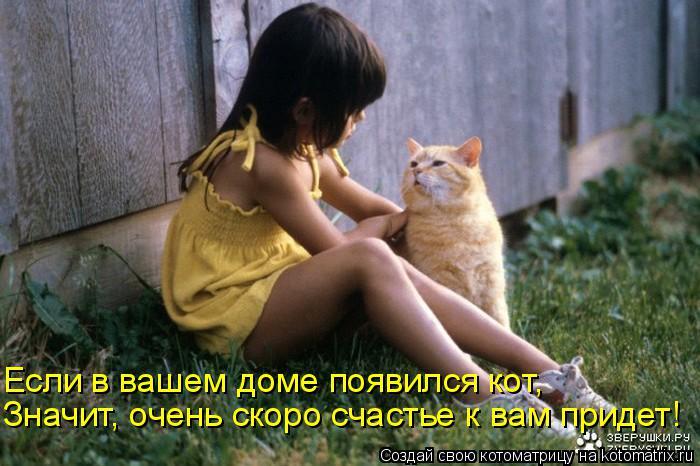 Котоматрица: Значит, очень скоро счастье к вам придет! Если в вашем доме появился кот,