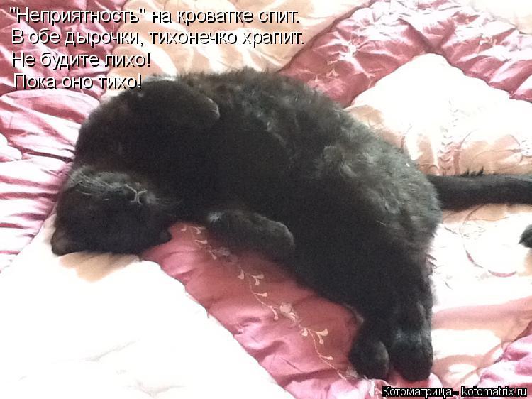 """Котоматрица: """"Неприятность"""" на кроватке спит. В обе дырочки, тихонечко храпит. Не будите лихо! Пока оно тихо!"""
