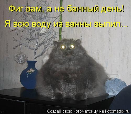 Котоматрица: Фиг вам, а не банный день! Я всю воду из ванны выпил...