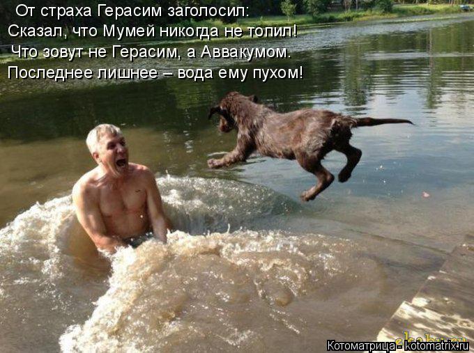 Котоматрица: От страха Герасим заголосил: Сказал, что Мумей никогда не топил! Что зовут не Герасим, а Аввакумом. Последнее лишнее – вода ему пухом!