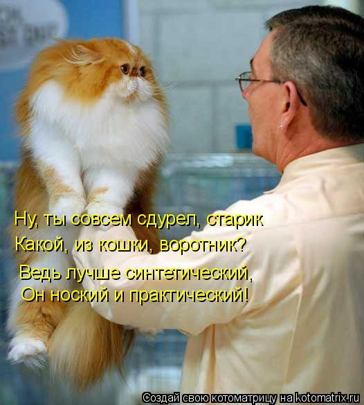 Котоматрица: Ну, ты совсем сдурел, старик   Какой, из кошки, воротник?  Ведь лучше синтетический,  Он ноский и практический!